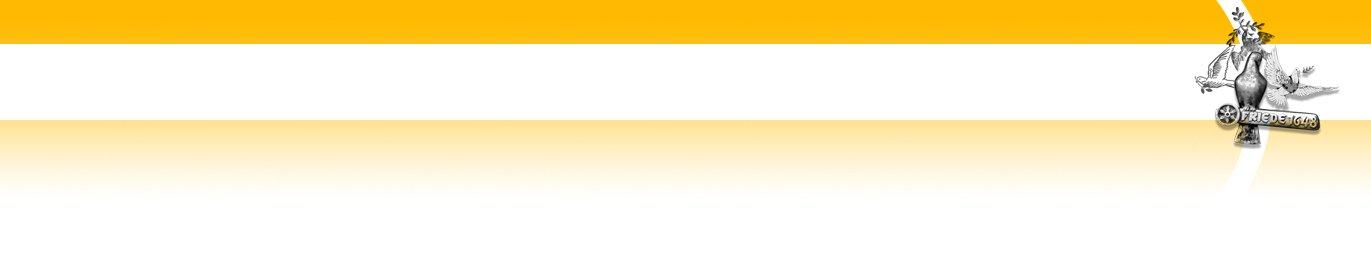 Auf dem Bild ist ein Layoutelement der Homepage in orange/weiß mit der Osnabrücker Friedenstaube zu sehen.